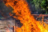 В Забайкалье открылась горячая линия из-за ситуации с пожарами