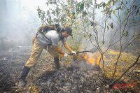 Уголовные дела о халатности заведены после природных пожаров в Забайкалье