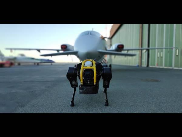 Маленький робот HyQReal во время испытаний отбуксировал самолет весом 3 тонны