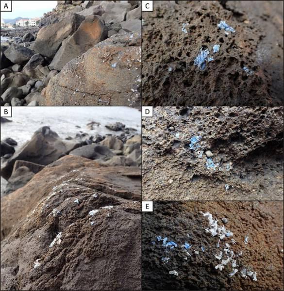 Новый опасный вид загрязнения начал образовывать корку на прибрежных камнях