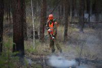 Таежный пожар в Бурятии угрожает детскому лагерю