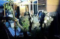 Росгвардия: на Северном Кавказе ликвидировали 20 ячеек террористов