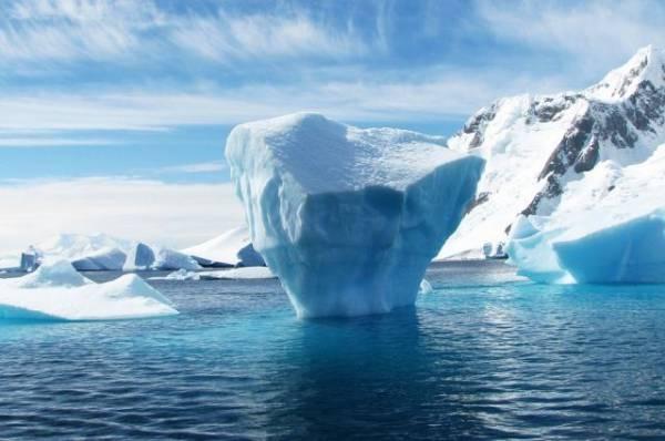 В Антарктиде экстренно приземлился самолет ВС Аргентины