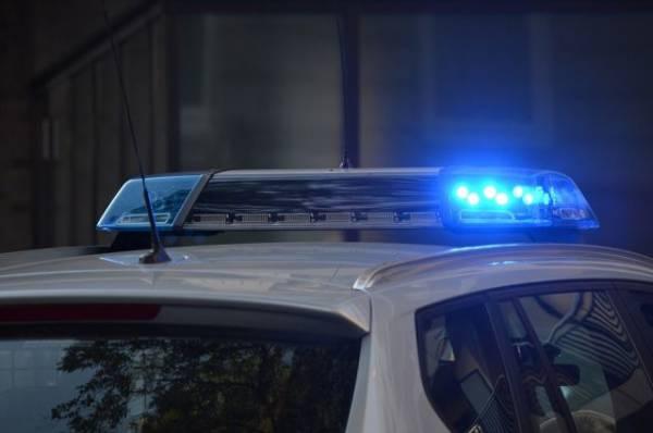 Под Петербургом водитель сбил насмерть девочку и скрылся с места ДТП