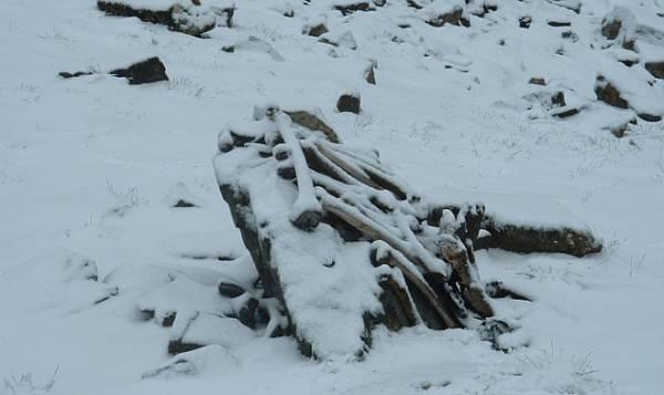 Анализ ДНК останков из гималайского «Озера скелетов» лишь усугубил его загадку