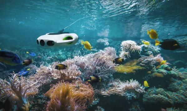 Новый подводный беспилотник BW Space получил потрясающую камеру с шестикратным зумом