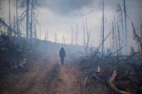 В Иркутской области ликвидировали последний лесной пожар