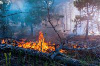 В Нижегородской области два человека пострадали при пожаре на складе ГСМ