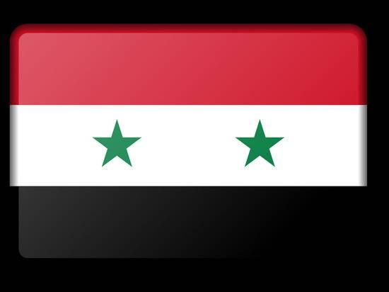 Войска Асада отправились на север Сирии противостоять турецкой операции