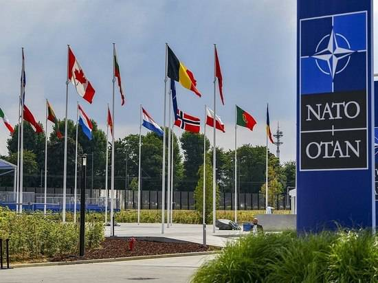 От слов Макрона о «смерти мозга НАТО» России не полегчало
