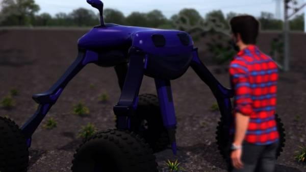 Команда роботов-фермеров эффективно истребляет сорняки электрическими разрядами