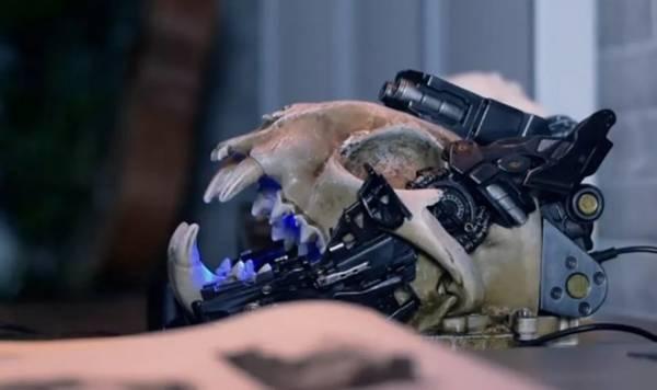 На Kickstarter теперь можно приобрести динамик в виде черепа кибер-рыси