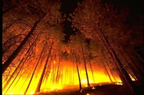 В Гусь-Хрустальном загорелся Дом культуры