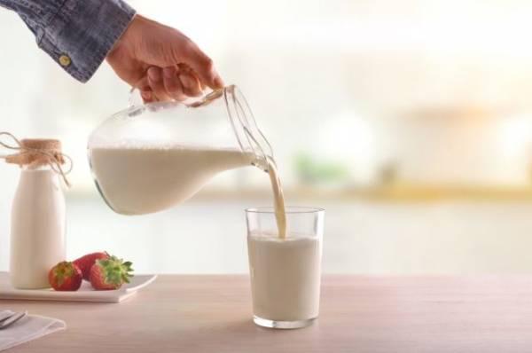 Три стакана в день. Почему те, кто пьёт молоко, реже толстеют и болеют?