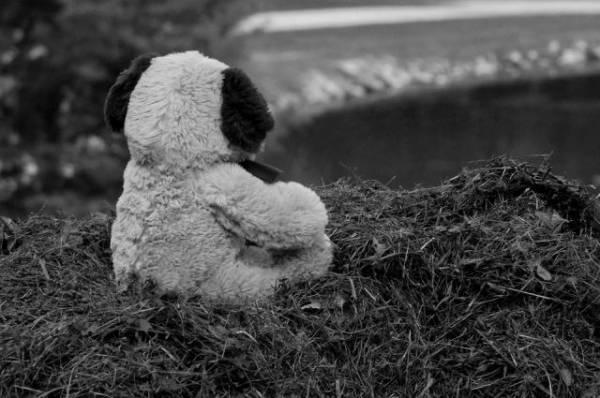 В Саратовской области в пруду на глазах у подруги погибла 12-летняя девочка