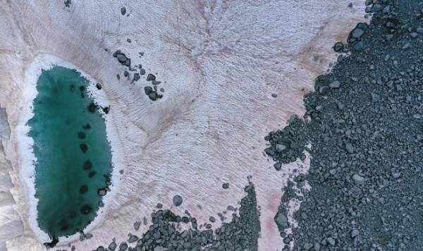 В Альпах появился розовый снег – и это признак климатической катастрофы