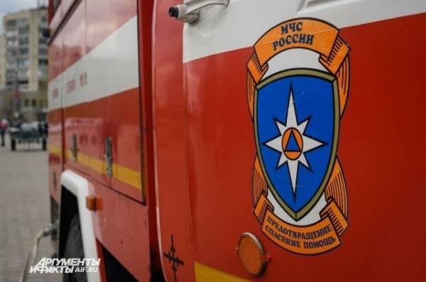 Под Воронежем из-за лесного пожара эвакуировали населённый пункт