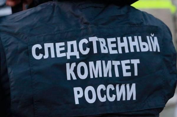 В Нижегородской области задержали подозреваемого в убийстве школьницы