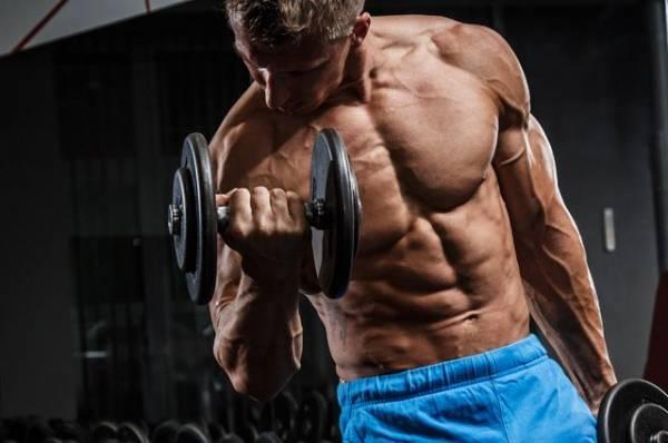 Здоровая прокачка. Как набрать мышечную массу без вреда для организма