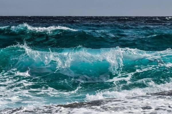 В США моряки спасли с тонущего судна более 20 человек