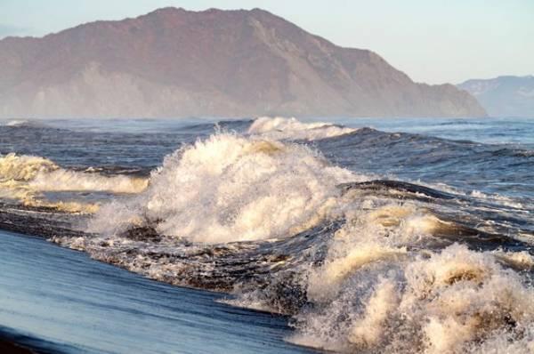 В РАН рассказали о природных причинах загрязнения Авачинского залива