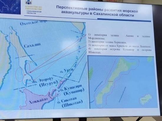 Российский чиновник использовал карты с «японскими Курилами»