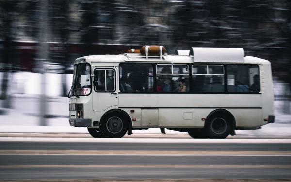 Требования к водителям автобусов опять ужесточат