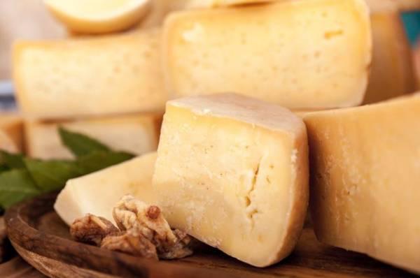 Почему сыр полезнее других молочных продуктов?