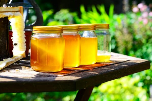 Сколько мёда можно съесть в день?