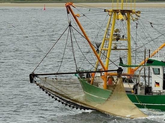 Российские рыбопромышленники столкнулись с проблемами экспорта в Китай из-за Сovid-19