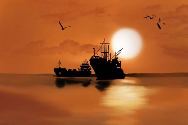 На судне в территориальных водах РФ был убит вьетнамец