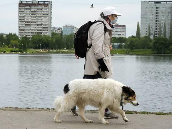 Эксперт заявила об угрозе лишения россиян пенсий из-за новой инициативы