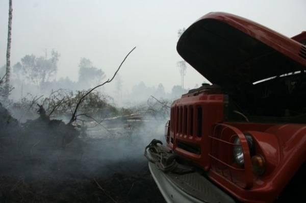 Половина Абхазии осталась без электричества из-за пожаров