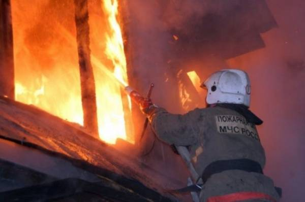 При пожаре под Новосибирском пострадали женщина и пятеро детей
