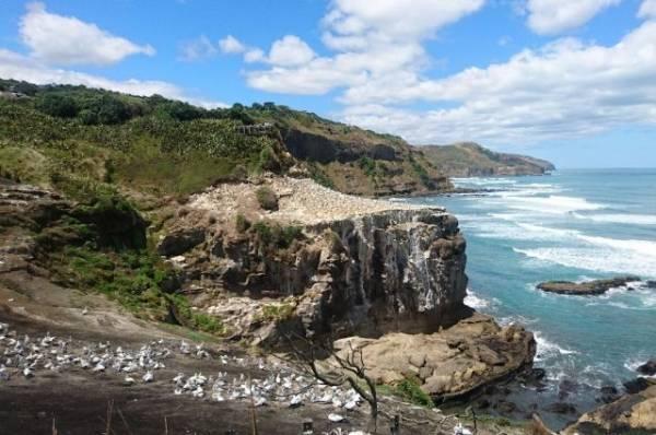 В Новой Зеландии отметили 25 афтершоков после сильного землетрясения
