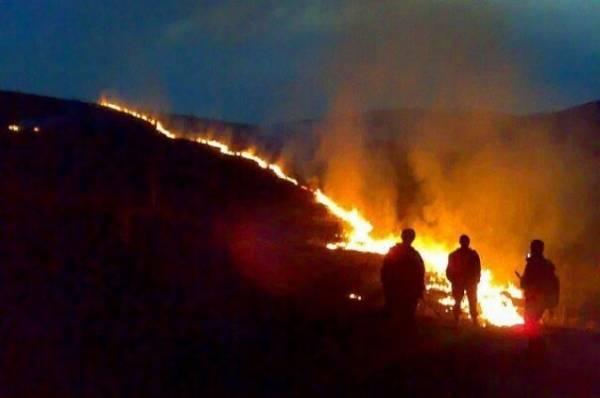 В Астраханском заповеднике площадь пожара достигла 8,5 га