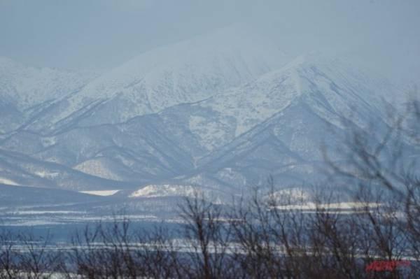 Землетрясение магнитудой 5,0 произошло у побережья Камчатки