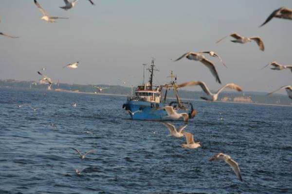 На рыболовецком траулере в Охотском море потушили пожар