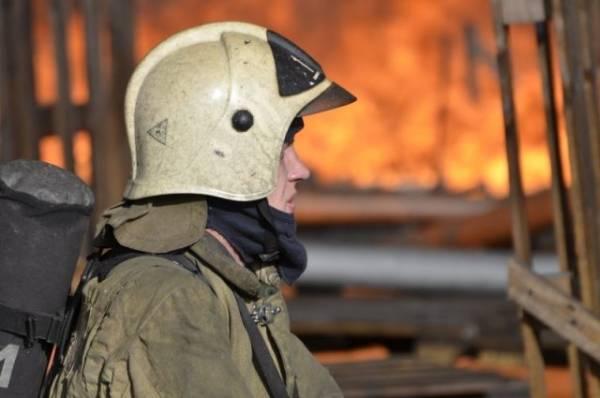 Площадь пожара на мебельном складе в Подмосковье выросла до 3600 кв. метров