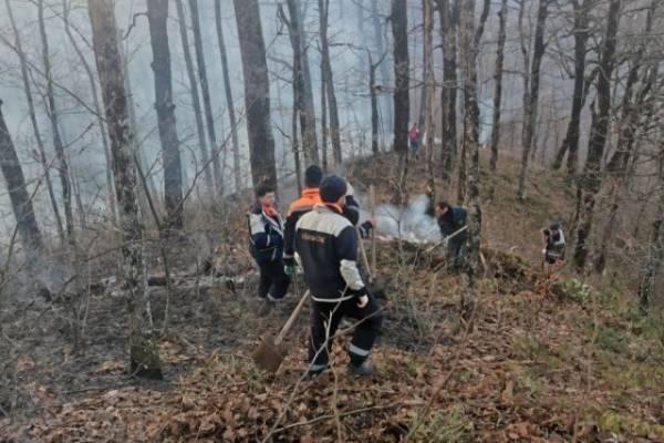 Вильфанд назвал регионы с высоким риском природных пожаров