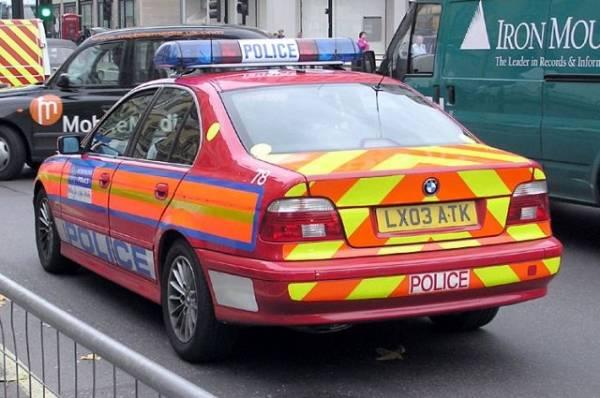 В Лондоне девять полицейских пострадали в ходе акции в поддержку Палестины