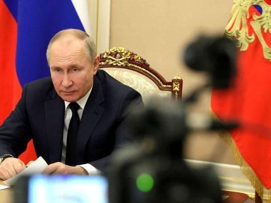 Путин поручил кабмину ввести учет домашних животных