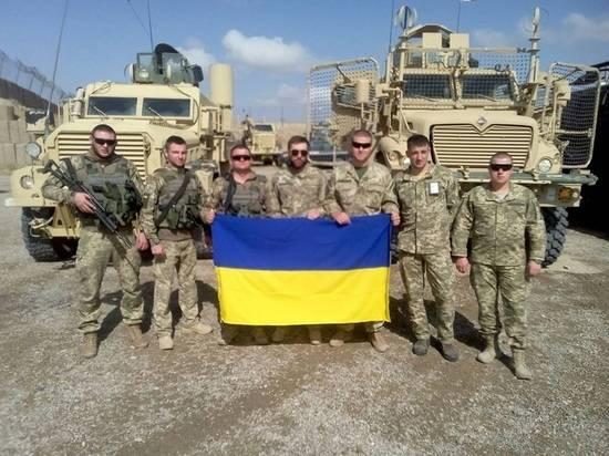 Военный эксперт назвал 5 шагов России в случае вступления Украины в НАТО