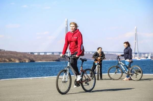 Велосипед для здоровья. Плюсы и особенности трех видов тренировок