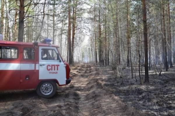 В России за сутки потушили 82 лесных пожара