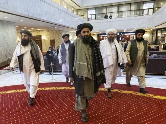Спрогнозировано наступление Талибана на Таджикистан: решать проблему придется России