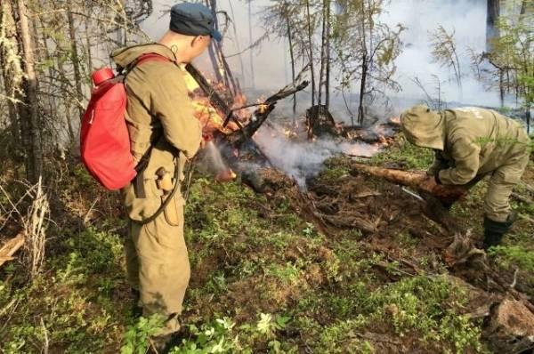 В России за сутки ликвидировали 97 природных пожаров