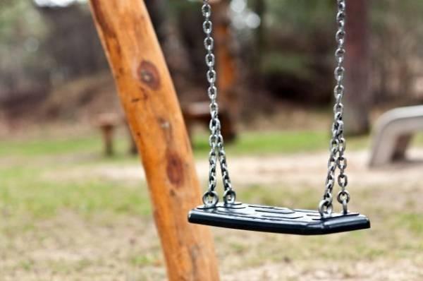 В Гатчине 5-летняя девочка погибла во время катания на самодельных качелях