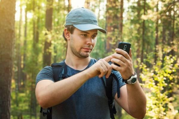 Поход под запретом. С какими заболеваниями не стоит ходить в лес?