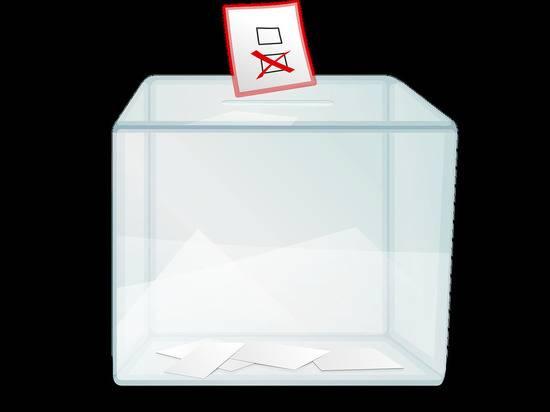 В Узбекистане объявили дату президентских выборов